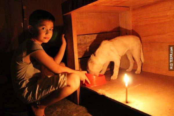 能夠為狗狗們奉獻時間與心血,Ken感到非常快樂,僅管由於電力供給的缺乏,城市必須進行燈火的管制。