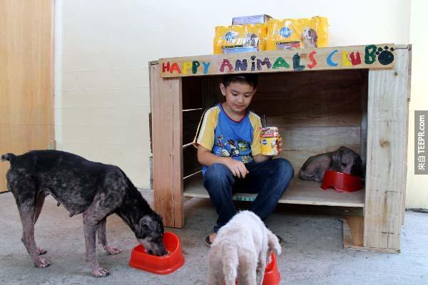 這些善款幫助他們為這些營養不良的小動物們,購買進口的狗食。這些進進口的狗食在菲律賓是很昂貴的。