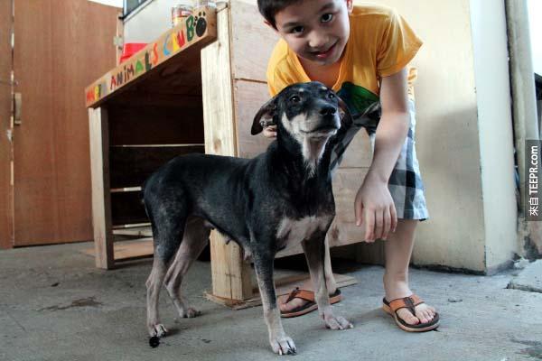 這隻叫Blackie的狗狗,以前是最害怕人類的,但現在卻變得非常黏人,她甚至喜歡抱抱勝過於吃晚餐。