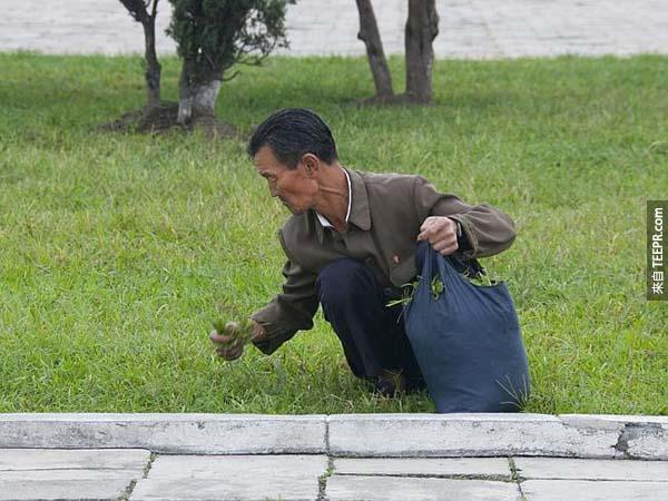 在北韓,這張照片裡的景像其實很常見,但是如果被守衛知道你拍了這樣的照片,他們會很生氣。
