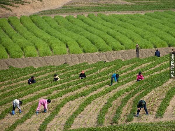 北韩的官员禁止人们拍摄这些穷苦的人。