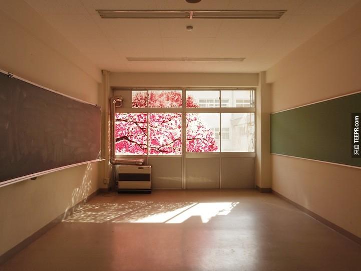 这间教室完全都是空的,唯一的色彩来自外面的樱花树。
