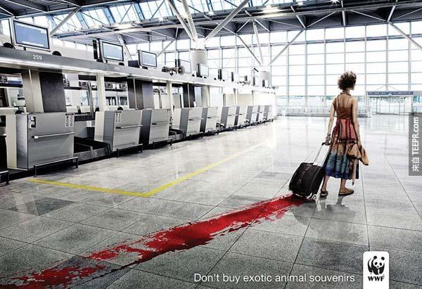 39.) 不要買稀有動物的紀念商品。