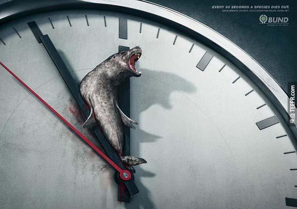 19.) 每60秒就有一個動物種類絕種。