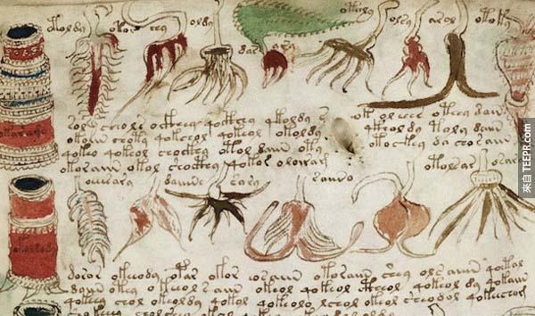 2.) 伏尼契手稿 (Voynich Manuscript): 這份宣稱已有600年的歷史手稿,所使用的文字仍難以被解讀,但它有可能是一本醫學參考書。