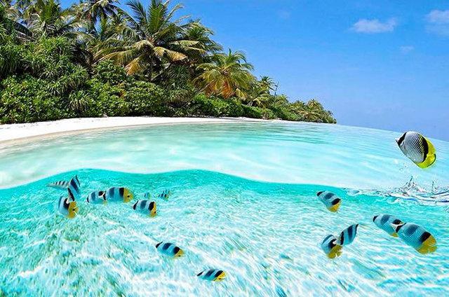 35個全世界最清澈的海水。你一輩子一定要游一次看看!