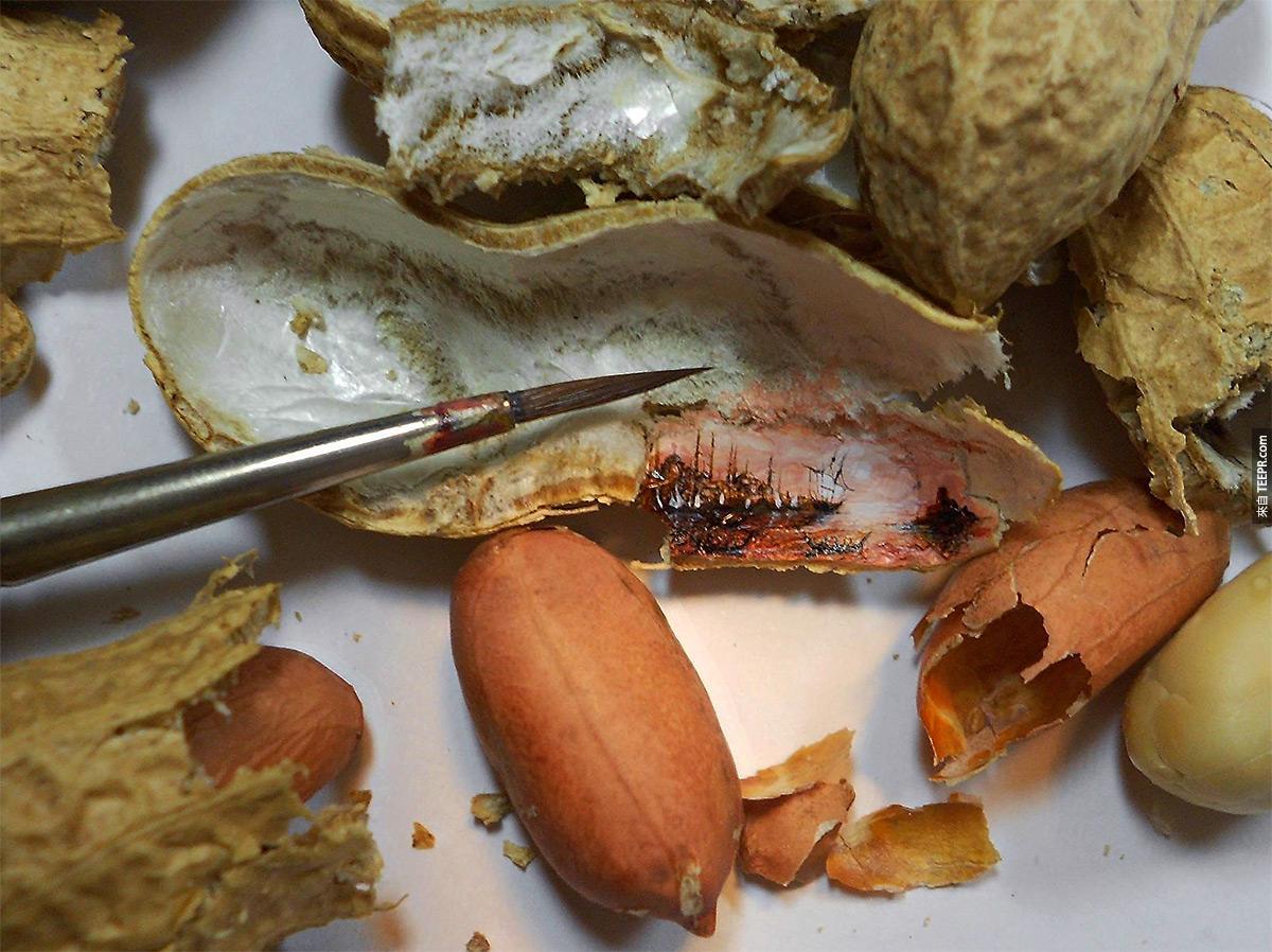 8. Peanut shell