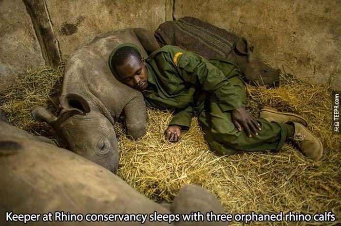 26張人類和動物的照片讓我們看到世界真的是美好的。