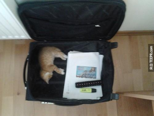 They%20stow%20away%20very%20nicely%20in%20a%20suitcase.%20