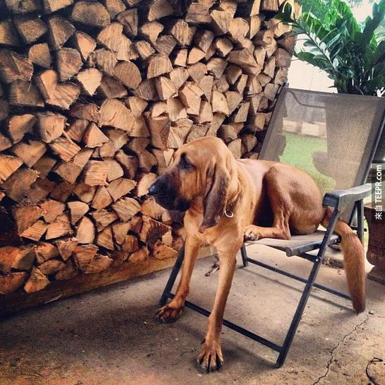 21. 椅子不夠大嗎?我才不CARE呢。