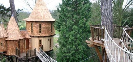 你可以不喜歡樹屋,但是你不可能不喜歡這個城堡樹屋。等你看到裡面時會更愛!