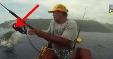 這名男子正在開心釣到魚的時候,突然發生的危險一定會讓你尖叫出來。
