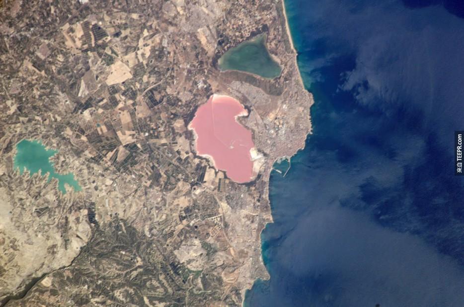 56. 粉色鹽湖,Torrevieja,西班牙