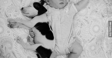 這個小Baby和小比特犬之間的友誼會立刻把你的心融化掉。