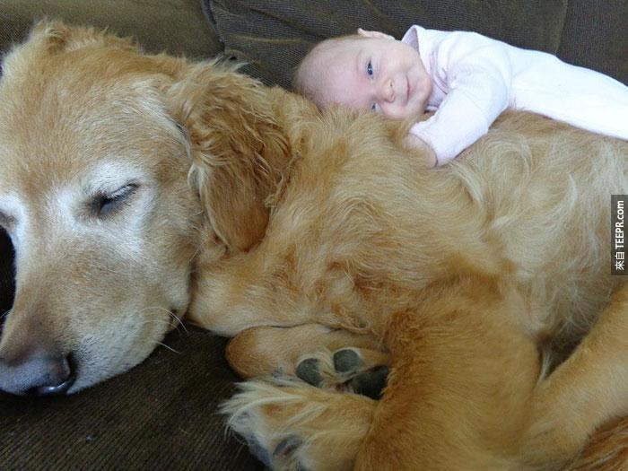 這不只是20個小孩子和大狗狗的照片。看完之後馬上見效!(悲傷的解藥)