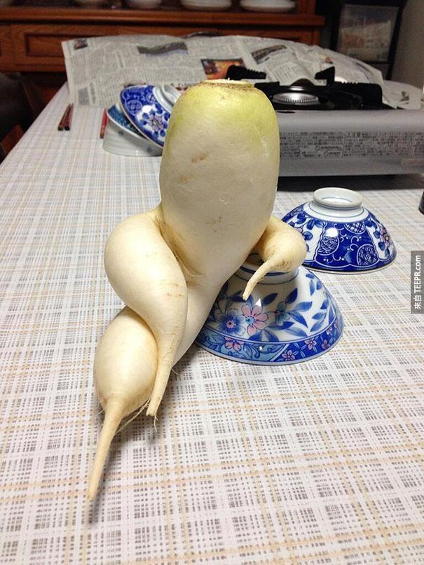 這28個蔬菜真的太喜歡模仿別的東西了。哼!學人精!