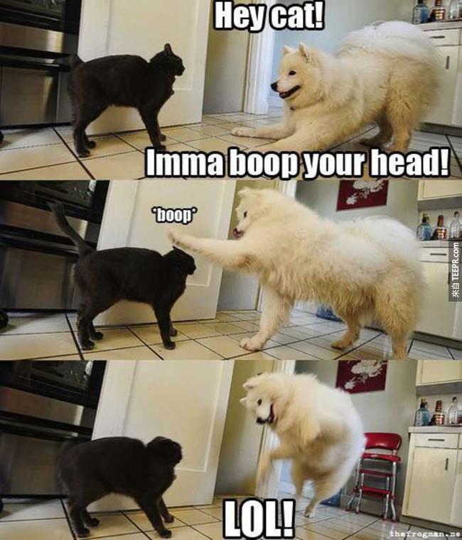 「Boop」這個字會改變你的一生,因為真的太可愛了!