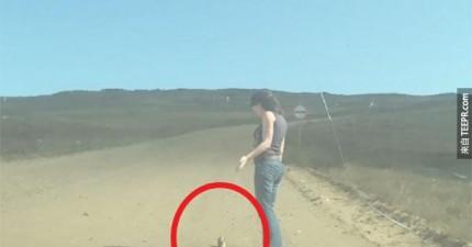 這對情侶開車開到一半在路中間看到一個小小的動物卡在土裡面掙扎。這是行車記錄器拍到的畫面。