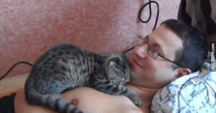 這隻超親切的貓咪會讓你對整個貓咪種族改觀。