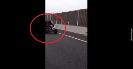 你一定要看看他們在日本開車時拍到的畫面!