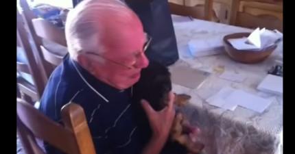 在失去相伴63年的老伴和最好的朋友後,這位老爺爺收到讓他痛哭流涕的驚喜。