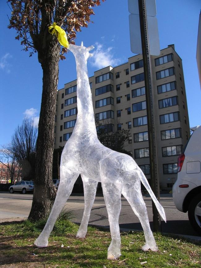 神奇的冰上長頸鹿,他正在為社區服務。