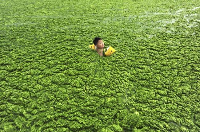 孩子們不該受到這樣的污染。