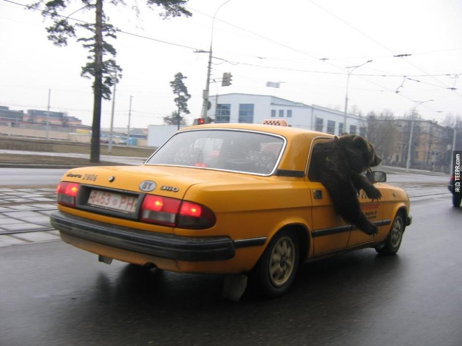 在計程車中兜風