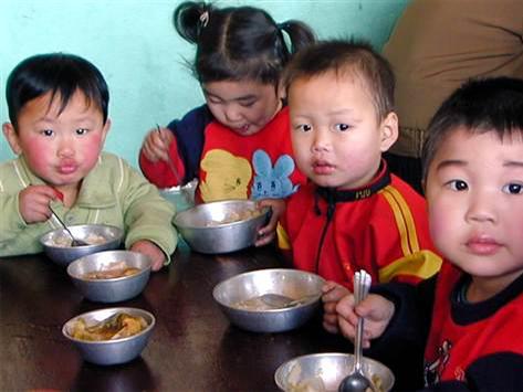 600 萬北韓人缺乏糧食和全國有 33 %的兒童長期營養不良。