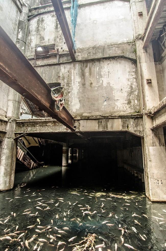 1.)被遺棄的購物中心,泰國曼谷