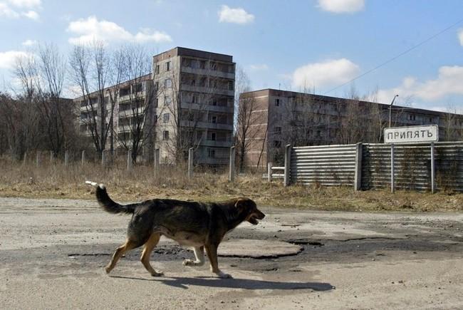 4.) 車諾比核電廠,烏克蘭