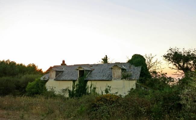 整棟房子被附近的森林給收回了。