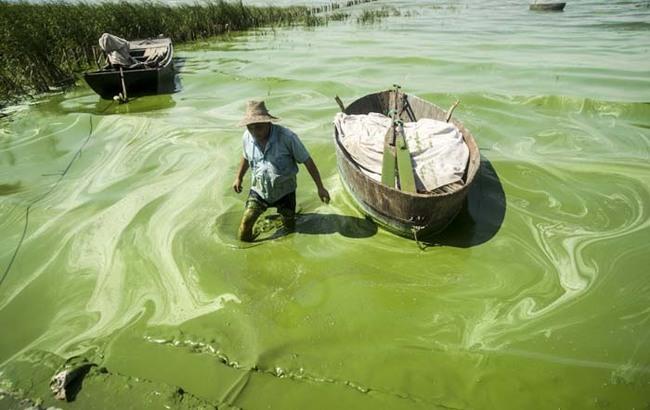 事實上,中國並不是唯一一個需要解決水污染問題的國家。