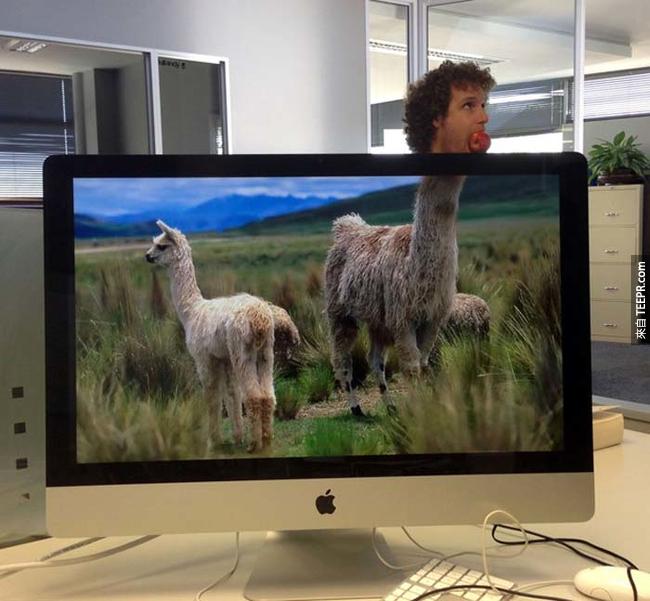 下次別再說在辦公室很無聊了。這兩個人找到又棒又安全的方式解悶。