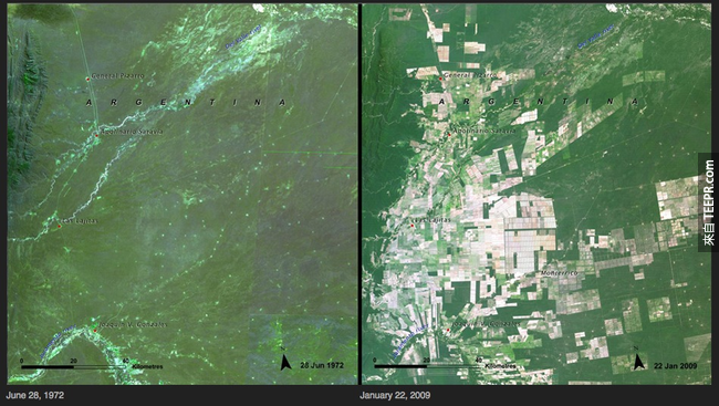 16)森林砍伐 - 阿根廷