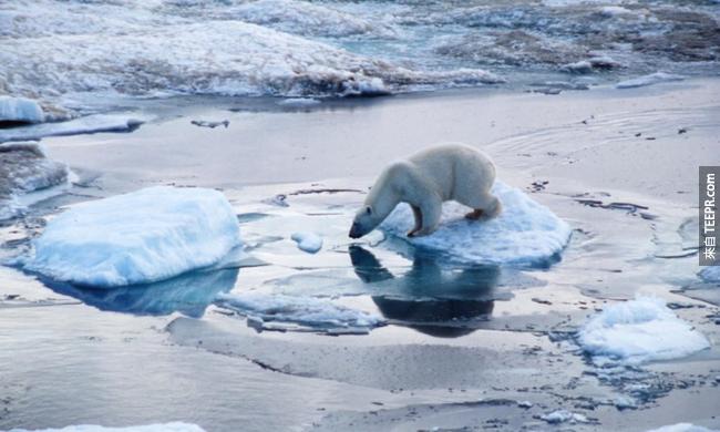 20)冰川融化 - 北極圈