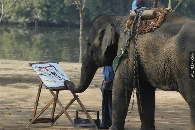 這些動物比你有藝術天分。不信嗎?來看看他們創造出的作品吧!