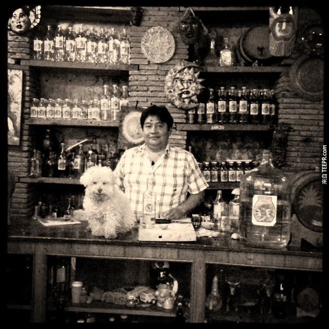 墨西哥瓦哈卡