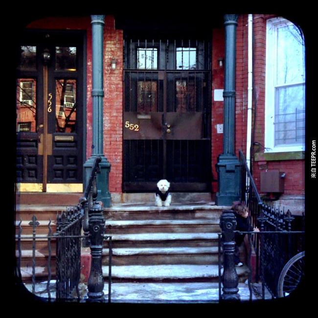 紐約布魯克林