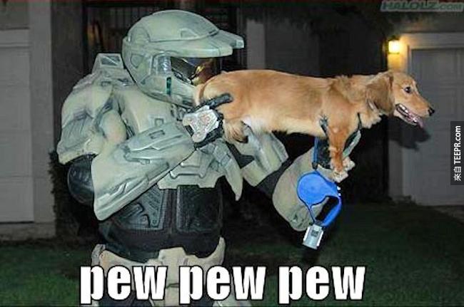 1. 臘腸狗原本是養來要捕捉獾,但看來並沒有很適合啊...