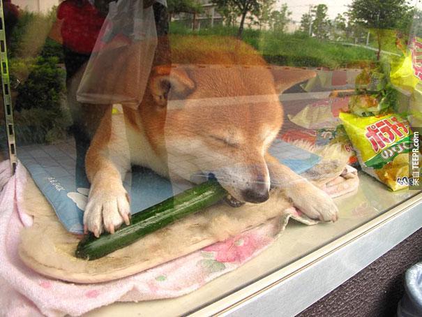 這家便利商店的店員會萌死你!可愛到世界各地的遊客都會特別去看他。