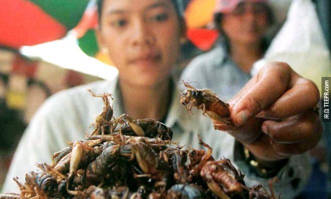 世界上有80%獲得蛋白質的方式是來自1,600種可食用的昆蟲。