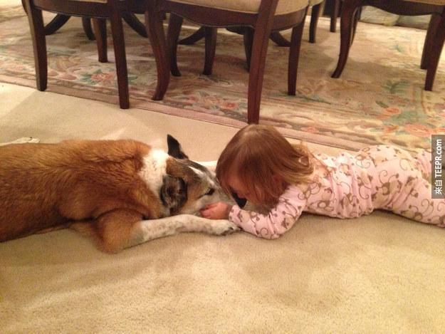17個只有養狗的人才會感受到的事情。