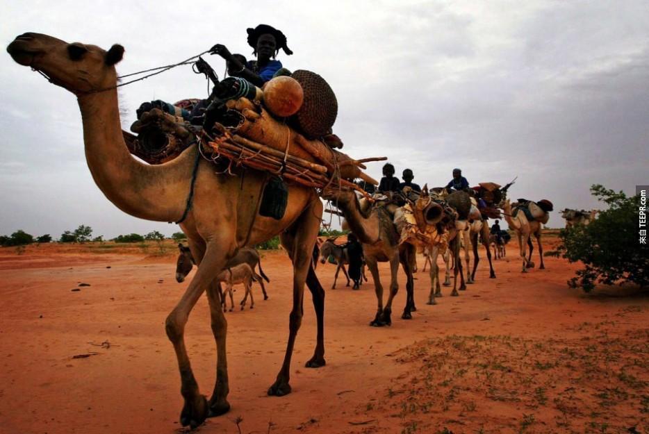 和鹽商一起穿越撒哈拉沙漠(Sahara Desert):北非(North Africa)。