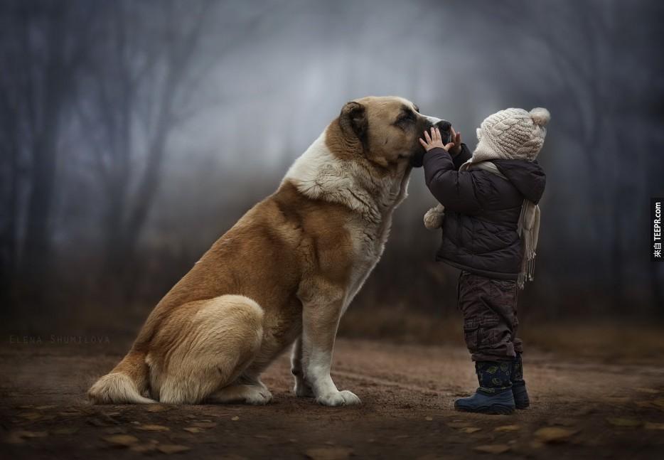 15個我們可以從狗狗身上學到的人生大道理。