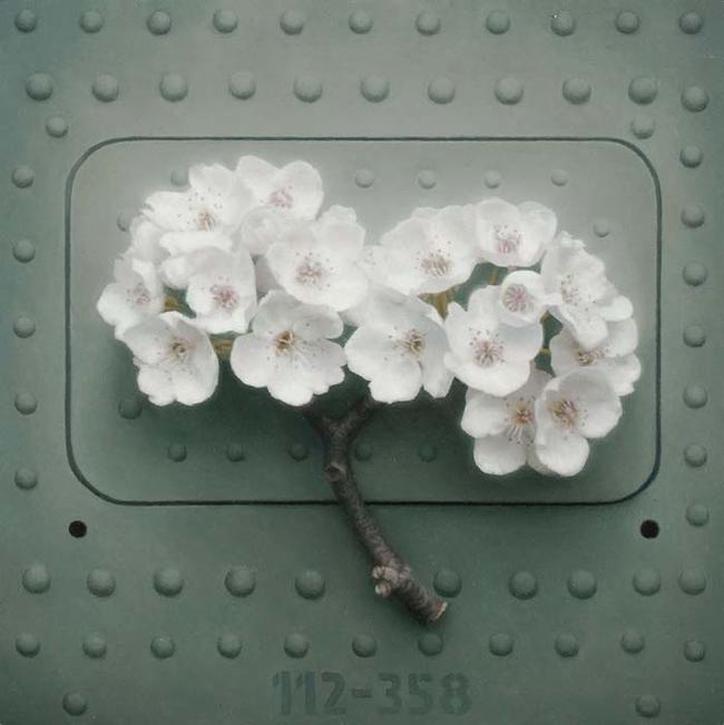 """""""Blossom I."""""""