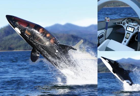 10. 仿鯊魚型潛艇(Innespace Seabreacher-Y Submarine):299萬台幣