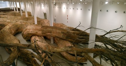 這看起來像是全世界最大的樹,但其實是一件你一定要走到裡面才能參觀的超酷藝術品。