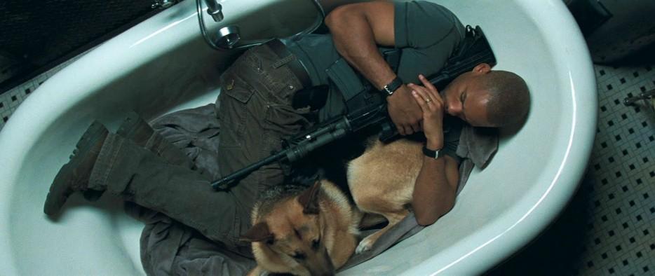16. 看電影的時候,你不怎麼在意有人死掉,但有狗死掉就會揪心到不行。