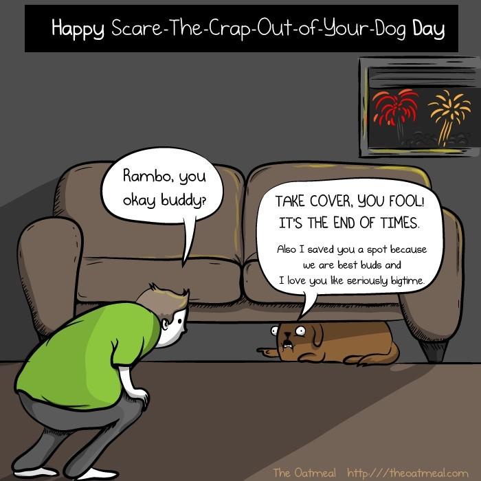 19. 跨年等一些會放煙火、鞭炮的節日是你最討厭的節日,因為你家狗狗都會嚇歪。